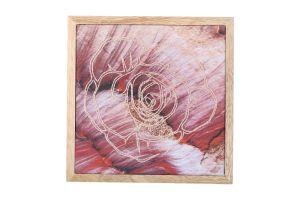 ROSE RED WALL HANGING